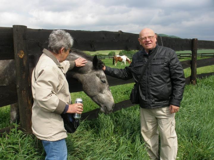 ... prostě kůň, co mluví lidskou řečí...